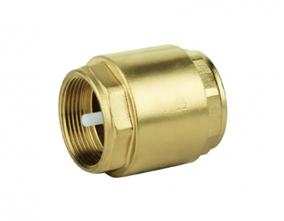 Cylindrical check valve